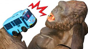 Learn Colors with Tayo the Little Bus Garage and King Kong Toys - Find Cars under the rock for Kids